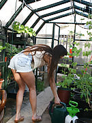 Hairy pussied Vixen decides a greenhouse will a perfect area to portray